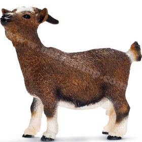 1/16 Goat Dwarf standing