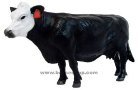 1/16 Cow Back/White Faced Cow