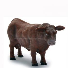 1/16 Cow Red Angus Bull
