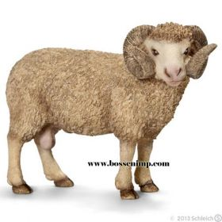 1/16 Sheep Ram Standing